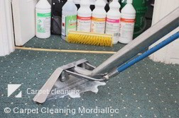 Professional Carpet Cleaners Mordialloc
