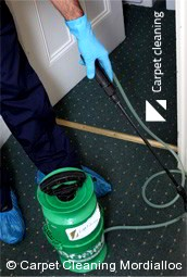 Professional Carpet Cleaners Mordialloc 3195